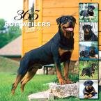 365 DAYS OF ROTTWEILERS 2007 WALL CALENDAR