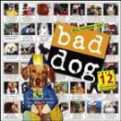 BAD DOG 2007 WALL CALENDAR-ORDER 2 OF THIS ITEM FOR FREE SHIPPING!