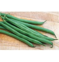 GREEN BEAN-FOREMOST***500 SEED!