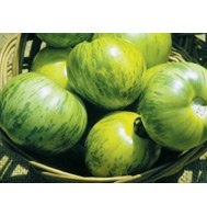 TOMATO*GREEN ZEBRA****ORGANIC & HEIRLOOM!***500 SEED!