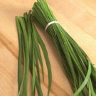CHIVES*GARLIC*NEW BELT*********3,000 SEEDS!