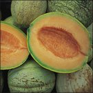 MELON***AMISH*******HEIRLOOM*******30 SEED