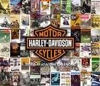 HARLEY-DAVIDSON-2008 DESK CALENDAR