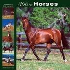 365 Days of Horses 2008 Wall Calendar
