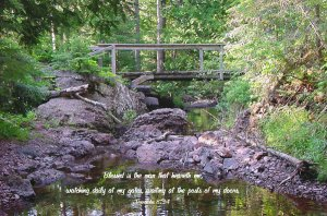"Bridge Over Calm Waters**8""x10"" Framed Art**Prov. 8:34"