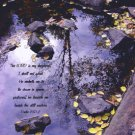 "In Calm Reflection**8""x10"" Framed Art**Psalm 23:1,2"