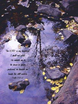 "In Calm Reflection**8""x10"" Framed Art**Psalm 23:1,2"