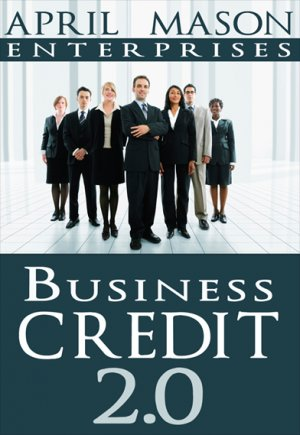 THE BUSINESS CREDIT ESTABLISHER 2.0 COACHING PROGRAM