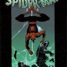 Marvel Comics AMAZING SPIDER-MAN VOL. 3: UNTIL THE STARS TURN COLD (1st Print) Straczynski Romit Jr.