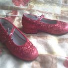 DOROTHY costume RUBY wizard 9.5 SLIPPERS of oz FREE SHIPPING shoe SHOES
