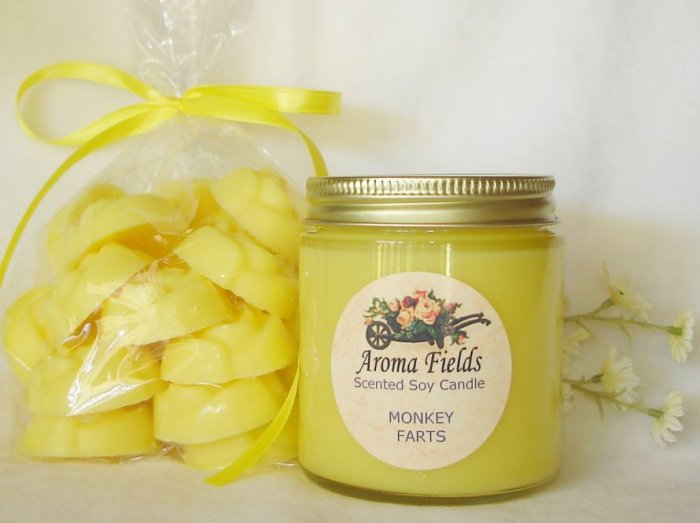 GIFT SET - 4 oz Parlor Jar Soy Candle & 18 Soy Wax Floral Melts
