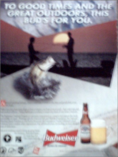1995 Budweiser Beer ad #1