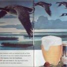 1964 Hamms Beer Ducks ad