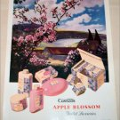 1952 Cussons Apple Blossom Toiletries ad from Great Britain