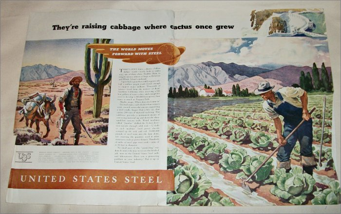 1937 United States Steel Cabbage ad