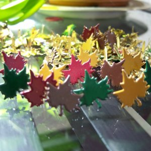 Colorful Maple Leaf Brads