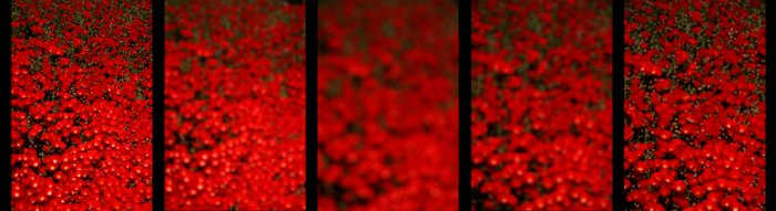 A Study In Red #2 (very limited edition)