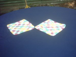 SET OF 2 DISH CLOTHES