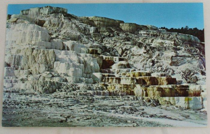 """Minerva Terrace"" 50s VINTAGE POSTCARD Yellowstone"