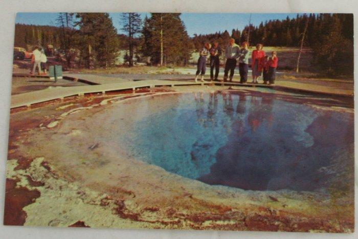 """Morning Glory Pool"" 50s VINTAGE POSTCARD Yellowstone"