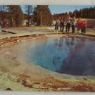 """Morning Glory Pool"" 50s VINTAGE POSTCARD Yellowstone"