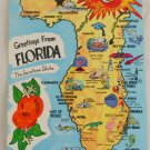 """Greetings From Florida"" VINTAGE POSTCARD Florida"