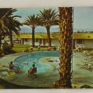 "POSTCARD ""Desert Palms"" VINTAGE Palm Springs CA"