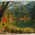 "POSTCARD ""Autumn"" VINTAGE Feather River  California"