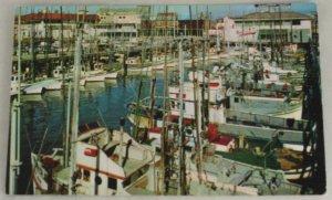 POSTCARD California,San Francisco, Fishing Fleet
