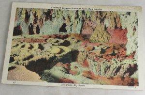 POSTCARD New Mexico,Carlsbad Caverns Curteich 46 Litho