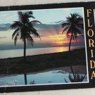 POSTCARD Florida,Early Morning Sunrise 1989 Plastichrome