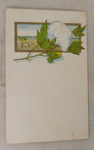 VINTAGE POSTCARD Divided Back,Cotton Boll,Slaves 1906