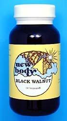 Black Walnut (Juglans nigra)