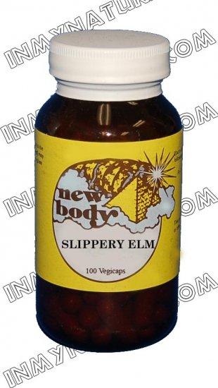 Slippery Elm (Ulmus rubra)