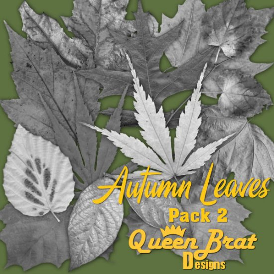Autumn Leaves Pack 2