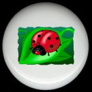 LADYBUG on a LEAF ~ Ceramic Knobs Pulls