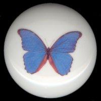 BEAUTIFUL BUTTERFLY 2 Ceramic Knob KNOBS
