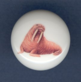 WALRUS Ceramic Knob KNOBS