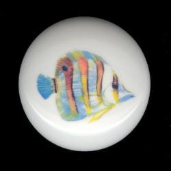 TROPICAL FISH #3 Ceramic Knob KNOBS