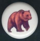 BROWN BEAR ~ Ceramic Knobs Pulls