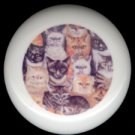 A CIRCLE of CATS ~ Ceramic Drawer Knobs Pulls