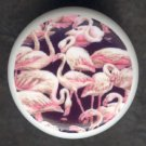 Circle of PINK FLAMINGOS Black Ground Ceramic KNOBS