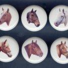 Set of 6 DRAFT HORSES Ceramic Knobs Pulls - Free Shipping