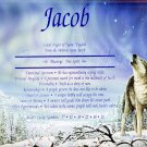 First Name Meaning - Howling Wolf