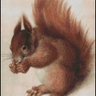 SQUIRREL #2 cross stitch pattern