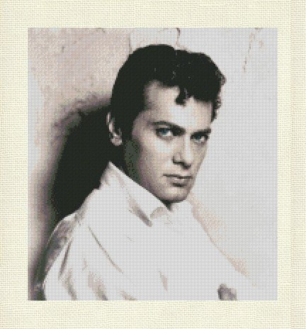 TONY CURTIS 2 cross stitch pattern