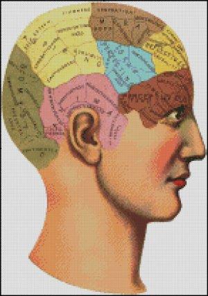 VINTAGE ANATOMICAL HEAD cross stitch pattern