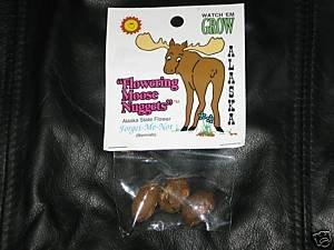 Alaskan Organic Flowering Moose Nuggets Forget-Me-Nots Gag Gift