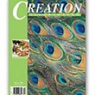 Creation Illustrated Magazine Summer 2005