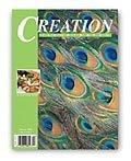 Creation Illustrated Magazine Summer 2005